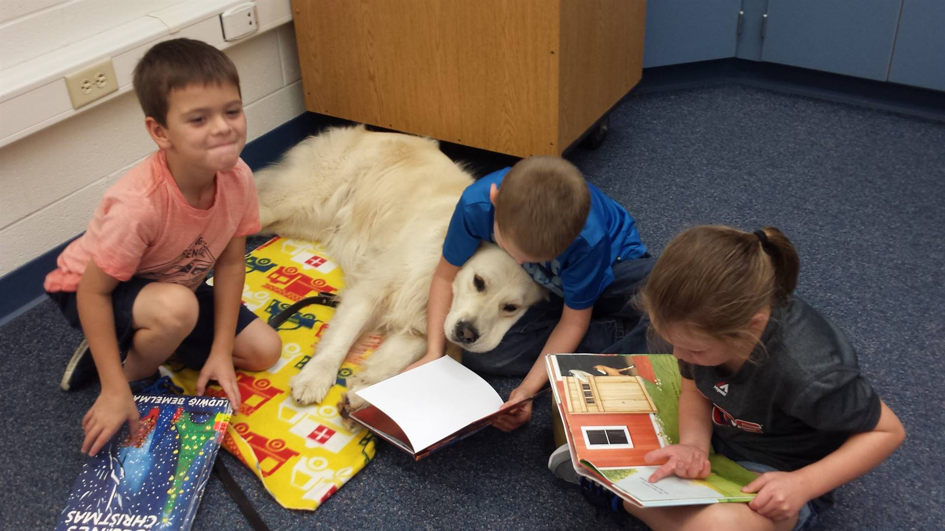 Dani, the reading dog, working hard.